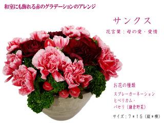 KN1901a1.jpg